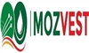 Mozambique Opportunities Within the Oil & Gas and ...