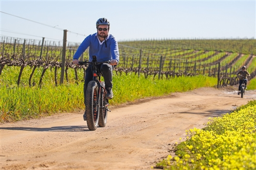 Electric Bike Winelands tour Full Day (with lunch)