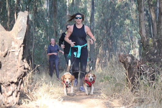 AdventureTails Barn Walk and Run - 29 February